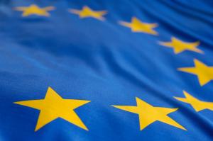 Europäisches Fallregister