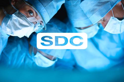 Vektor SDC