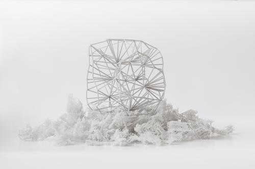 4D Biomaterials 3D-Druck
